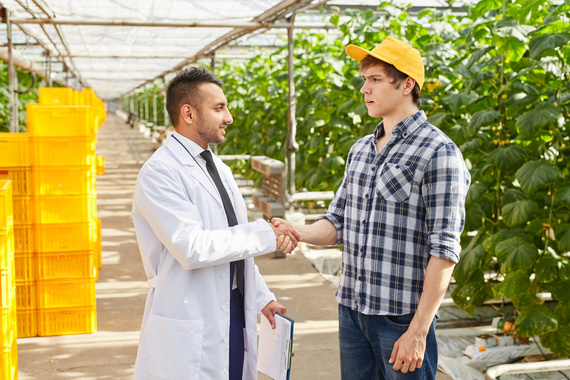 Farmer handshaking with quality control inspector